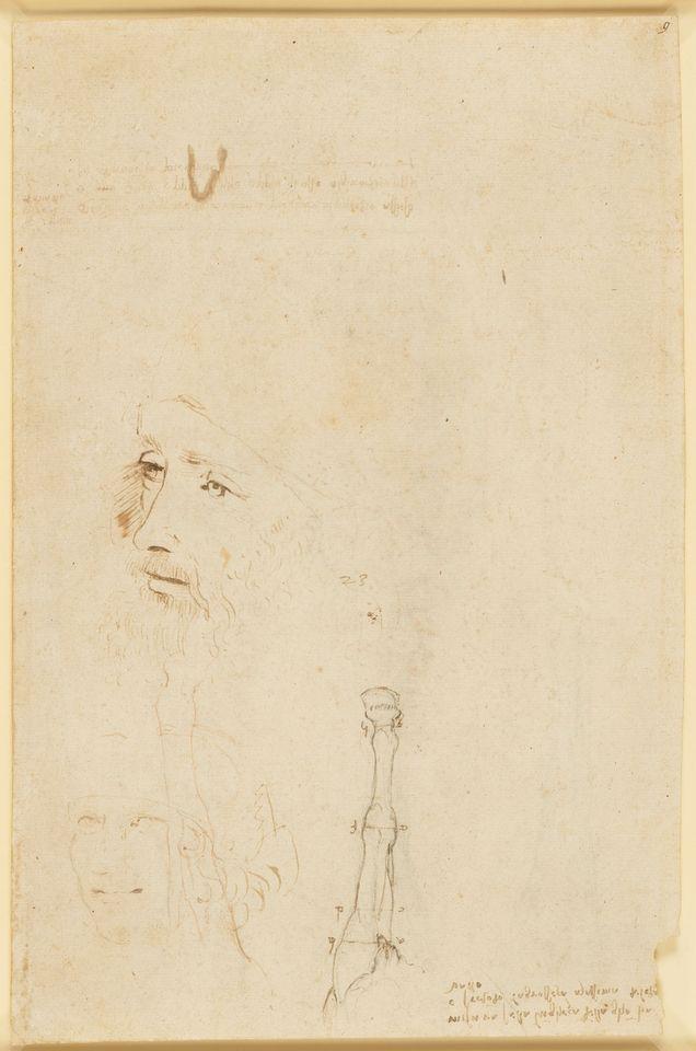 Portrait Sketch Of Leonardo Da Vinci Discovered In Britain S Royal Collection The Art Newspaper