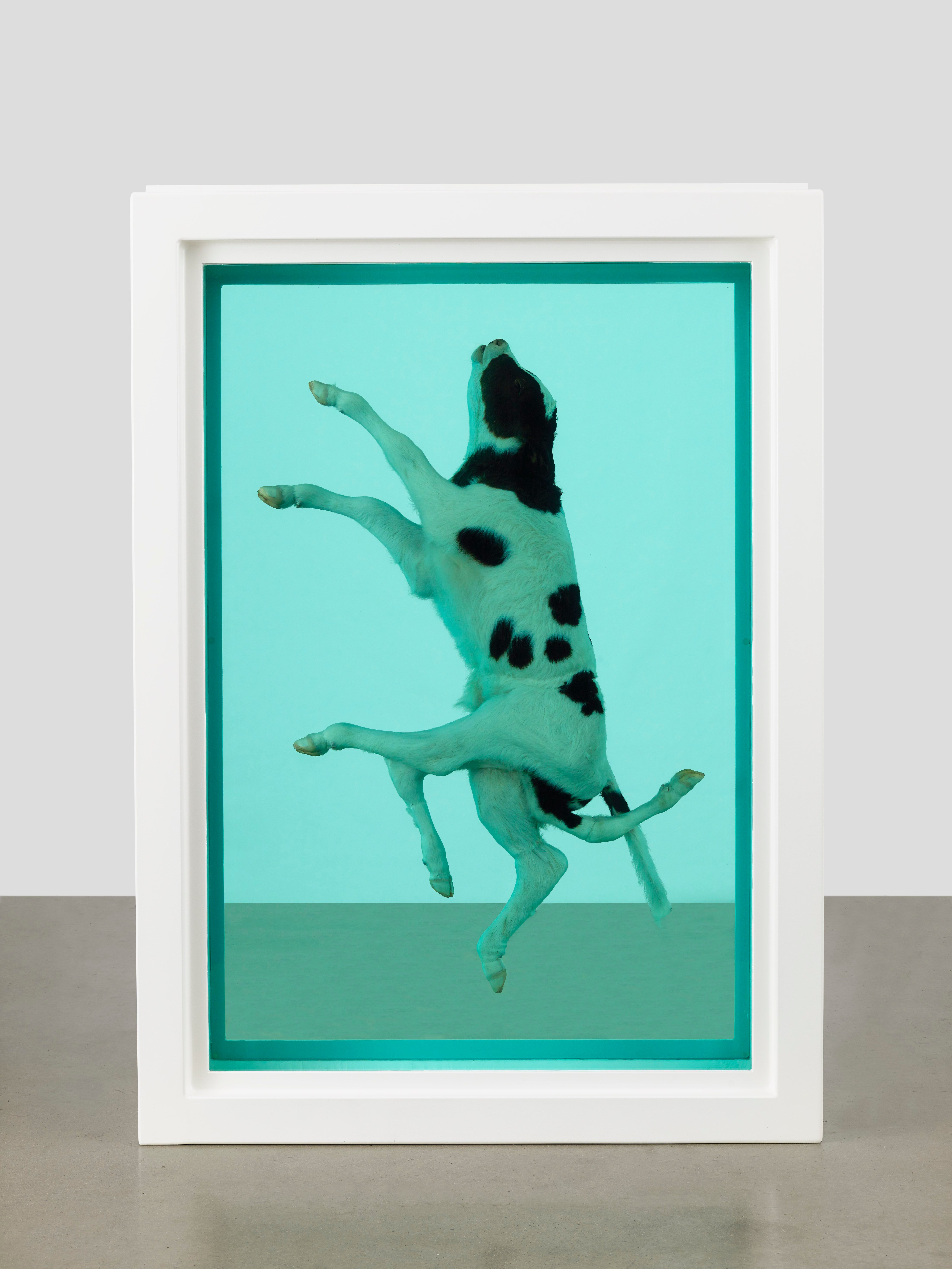 Damien Hirst's The Ascension (2003)