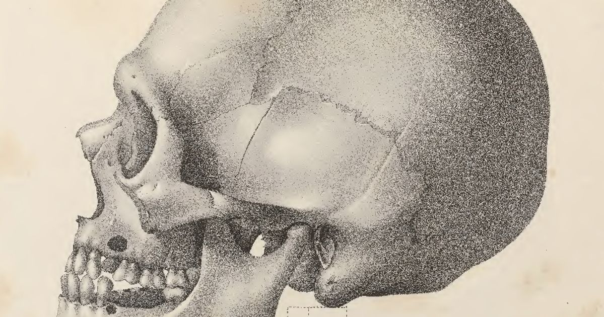 Penn Museum announces recommendations for repatriation of human skulls