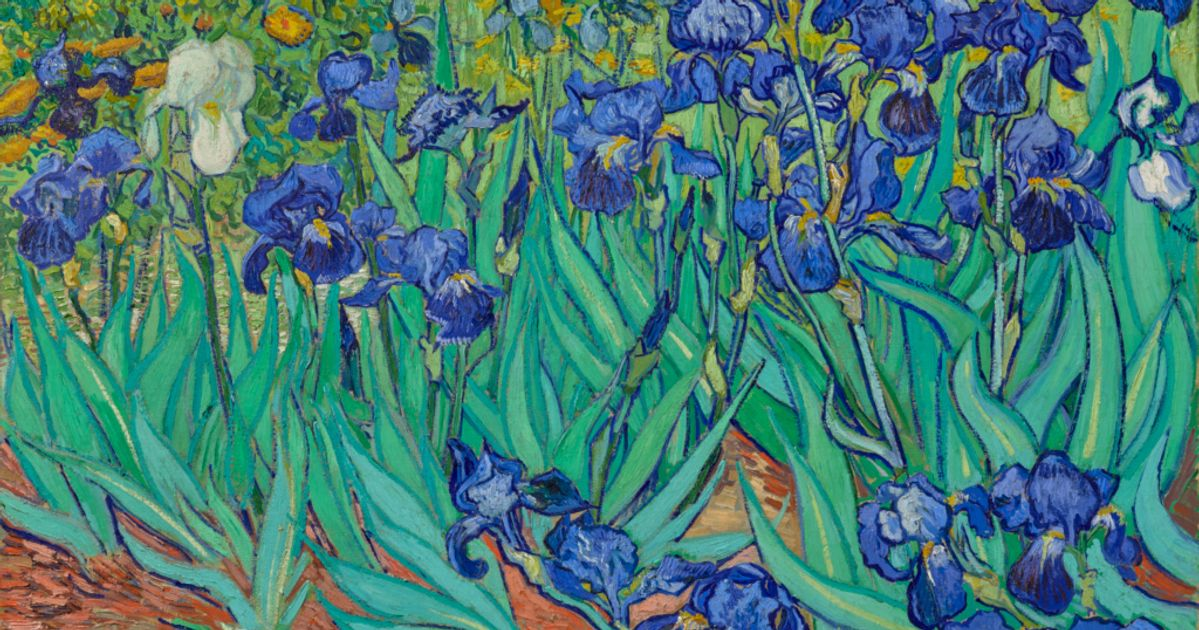 Irises: anniversary of Van Gogh's finest garden picture, painted on his first morning in the asylum