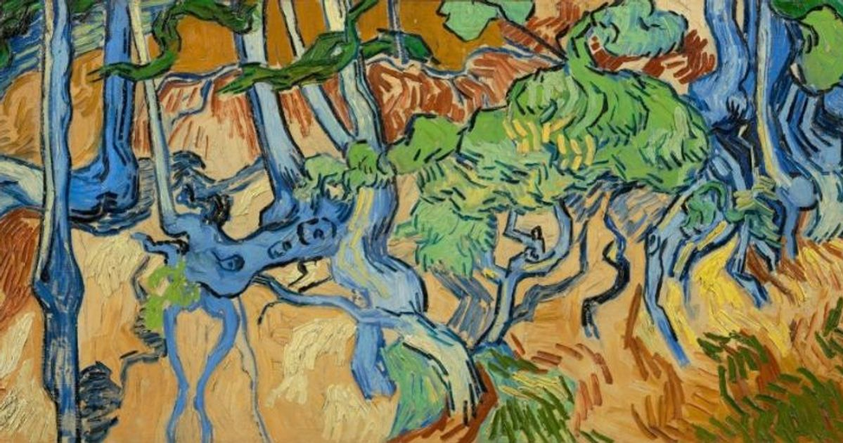 Discovered: a very early photograph of the trees in Van Gogh's final picture, painted just hours before he fired the fatal shot